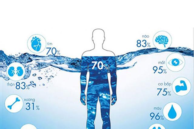 Nước có tầm ảnh hưởng quan trọng đến sức khỏe