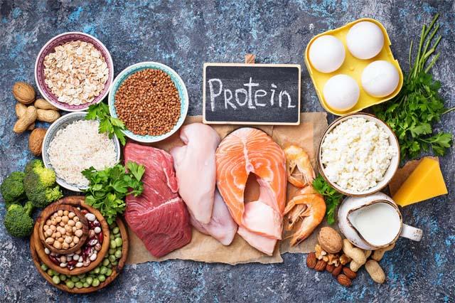 Chế độ ăn giàu Protein là gì? Vai trò của Protein đối với cơ thể