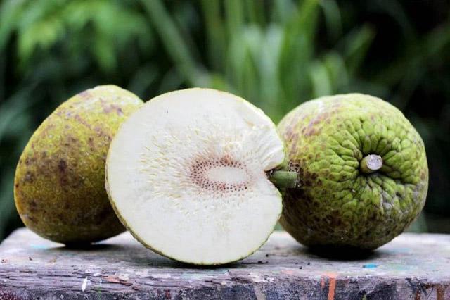 Trái sa kê là loại trái rất giàu Carb tốt cho tập Gym