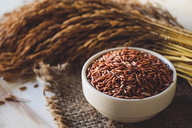 Gạo lứt cung cấp năng lượng hoạt động lâu dài và ít bị tích tụ mỡ trong cơ thể