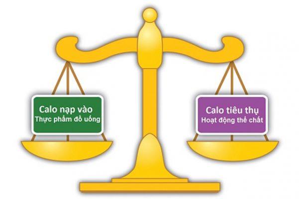 Tính toán lượng Calo mỗi ngày