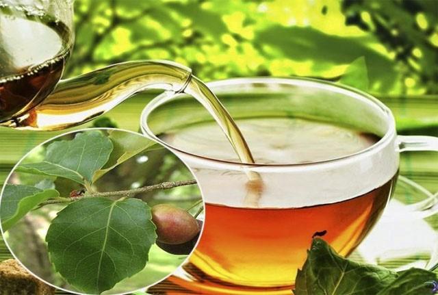 Trà lá vằng là trà giảm cân cho phụ nữ cho con bú vô cùng an toàn và cải thiện vóc dáng